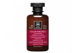 Apivita Σαμπουάν Προστασίας Χρώματος 250 ml (ΝΕΟ)