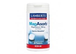Lamberts Mag Asorb 60 tabs